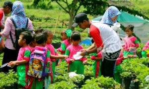 Outbound Petik Strawberry Padusan Pacet